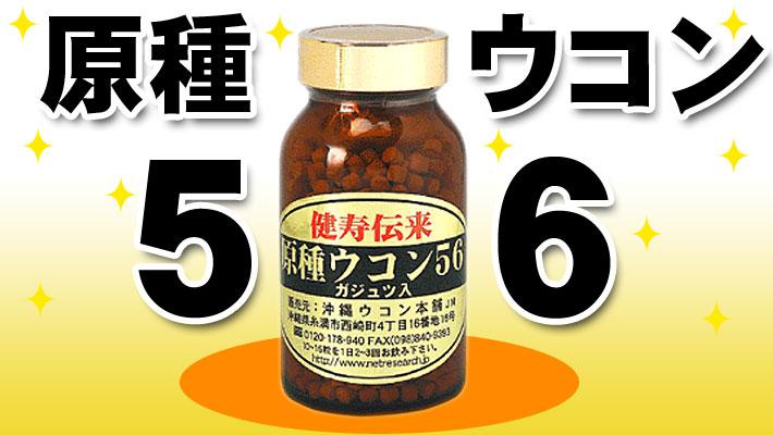 原種ウコン56(ガジュツ入)
