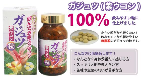 ガジュツ(紫ウコン)100%飲みやすい粒に仕上げました。