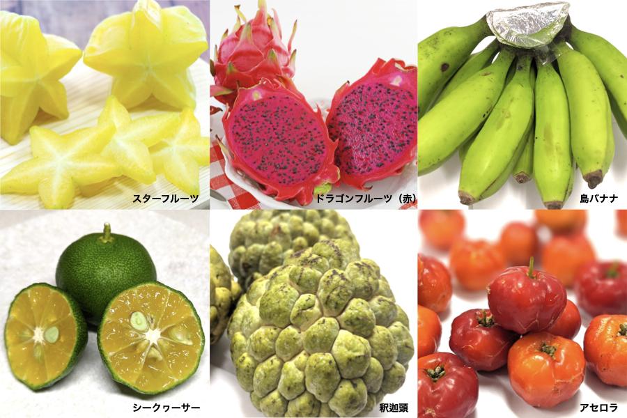 沖縄旬の果物